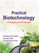 Practical Biotechnology: Principles and Protocols by H N Thatoi