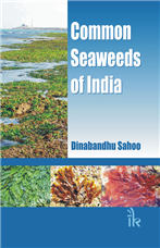 Common Seaweeds of India